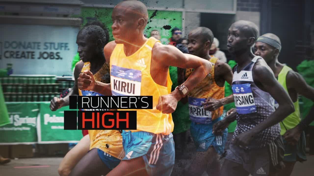 Dm 151031 sport science runners high