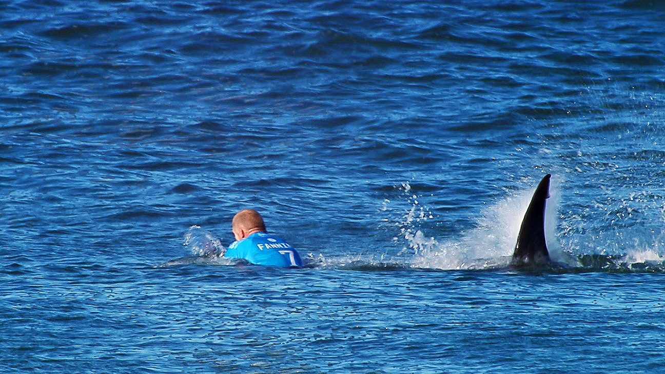 Dm 161221 misc e60 mick fanning what lies beneath